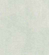 Салатовый перламутр (глянец)