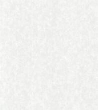 Терра белая (глянец)